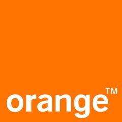 orange-logo-12-30-09