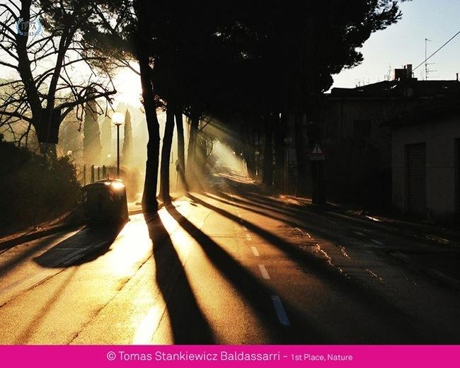 iphone-fotografcilik-odulleri-150813