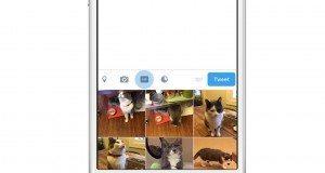 Twitter GIF butonu ile tweetlere animasyon eklemek kolaylaşıyor