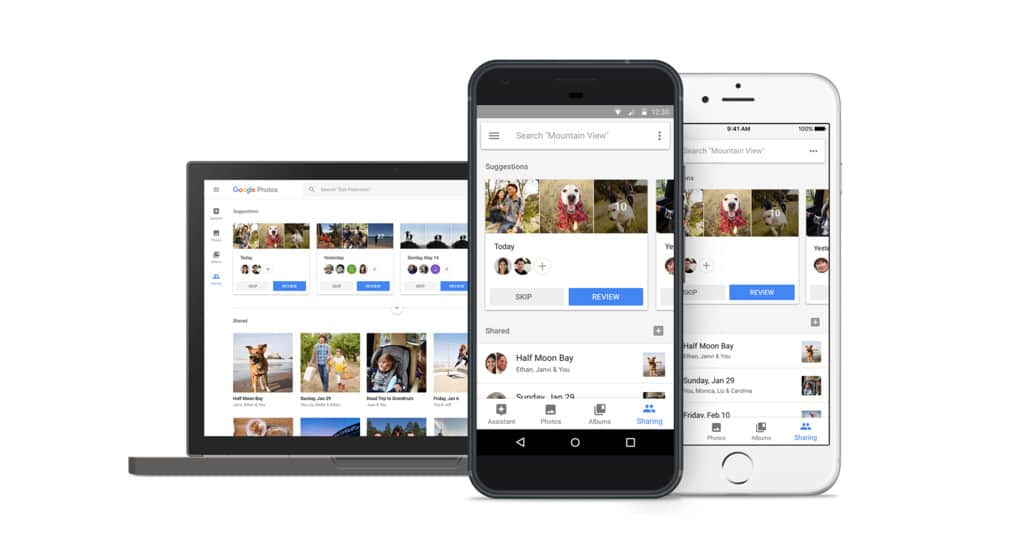 google fotograflar