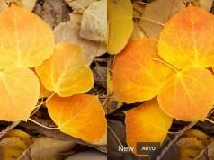 Adobe Lightroom yapay zekâ desteğiyle otomatik düzenlemeyi güzelleştiriyor