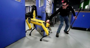 Boston Dynamics'in Spot Mini robot köpeği hiçbir engel tanımıyor – Video