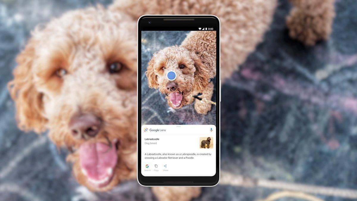 Google Lens doğrudan kamera uygulamasından çalışacak